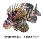 lionfish | Shutterstock . vector #510554974