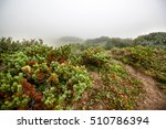 fog on the plain | Shutterstock . vector #510786394