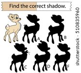Find The Correct Shadow. Fawn....