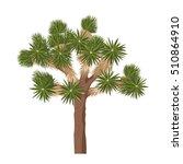 Yucca Brevifolia Vector. Joshu...