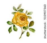 Yellow Rose In Watercolor....