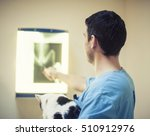 vet examing cat. | Shutterstock . vector #510912976