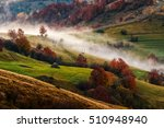 cold morning fog in the rural area of Carpathian mountain range at sunrise. green grass and trees with red foliage on the hillside meadow - stock photo