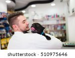 Stock photo veterinarian holding french bulldog puppy selective focus on dog 510975646