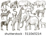 animals of africa. elephant ... | Shutterstock .eps vector #511065214