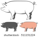 set of vector pigs silhouettes... | Shutterstock .eps vector #511151224