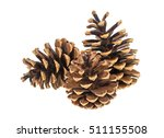 group of three pine cones on... | Shutterstock . vector #511155508