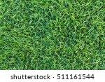 Natural Green Grass Texture ...