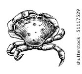 crab illustration | Shutterstock .eps vector #51117529