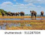 watering in the  river. herd of ... | Shutterstock . vector #511287034