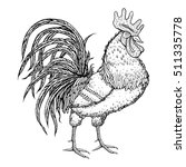 hand drawn rooster on white... | Shutterstock .eps vector #511335778