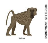 Baboon With Small Ears And A...