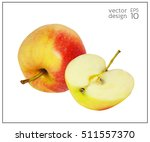 realistic apples. natural red... | Shutterstock .eps vector #511557370