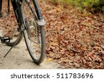 Bicycle parked by the wilted leaves; fall, Missouri, Midwest