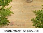 green thuja on the brown wooden ...   Shutterstock . vector #511829818