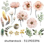 set vintage watercolor elements ... | Shutterstock . vector #511903396