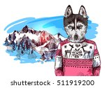 husky in knitted sweater in...