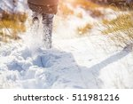 Small photo of Girl walks in the snow