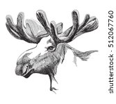 Portrait Of A Big Moose With...