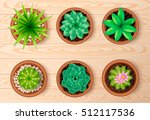 colored isolated top view plant ...   Shutterstock .eps vector #512117536