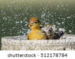 Summer Tanager Splashing In...