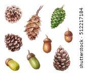 Watercolor Illustration  Cones...