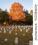 Civil War Cemetery At Stones...