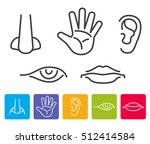 five human senses smell  sight  ... | Shutterstock .eps vector #512414584