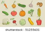 set of vegetables | Shutterstock . vector #51255631