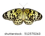Stock photo tropical red and black butterfly isolated on white background 512570263