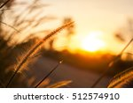 the grass at the roadside near... | Shutterstock . vector #512574910