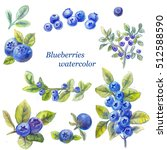 set of blueberry watercolor... | Shutterstock . vector #512588590
