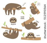 sloth set mother with baby.... | Shutterstock .eps vector #512593564