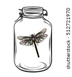 Dragonfly In A Glass Jar ...