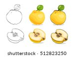 vector  color and sketch  tasty ... | Shutterstock .eps vector #512823250