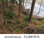 forest and lake in late autumn   Shutterstock . vector #512887876