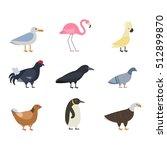 birds vector set | Shutterstock .eps vector #512899870