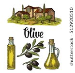 set olive. bottle and jug glass ... | Shutterstock .eps vector #512920510