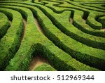 Spiral Hedgerow Maze