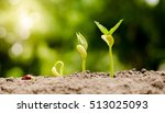 agriculture growing concept by... | Shutterstock . vector #513025093