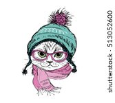 fashion cat in hat  scarf and... | Shutterstock .eps vector #513052600