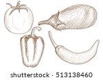 vegetable mix. hand drawn... | Shutterstock . vector #513138460