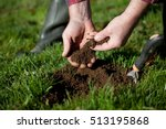 testing the soil on old pasture.   Shutterstock . vector #513195868