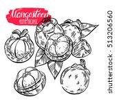set of appetizing delicious... | Shutterstock .eps vector #513206560