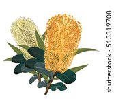 gold and yellow banksia flowers | Shutterstock .eps vector #513319708