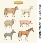 farm animals collection. vector ... | Shutterstock .eps vector #513320458
