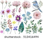 Stock photo set watercolor elements of rose collection garden and wild flowers leaves branches flowers 513416494