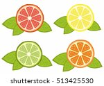 citrus vector. refreshing... | Shutterstock .eps vector #513425530