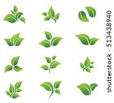 leaves  vector  icon  set... | Shutterstock .eps vector #513438940