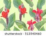 beautiful  luxury  exclusive... | Shutterstock .eps vector #513540460